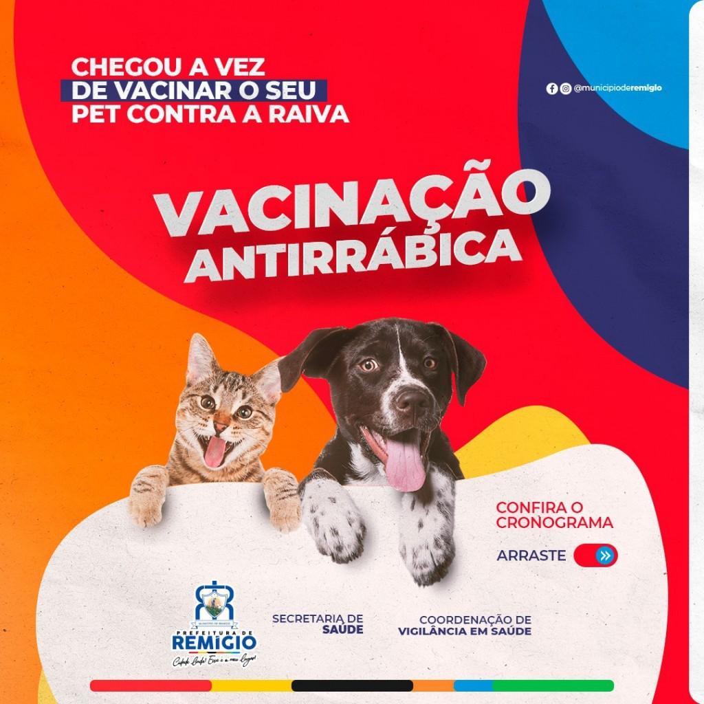 💉 Vacinação antirrábica: cuidados com os pets em Remígio 🐾